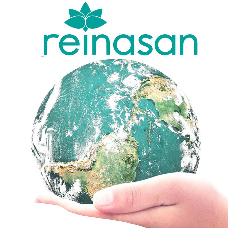 Next Level Office Reinasan